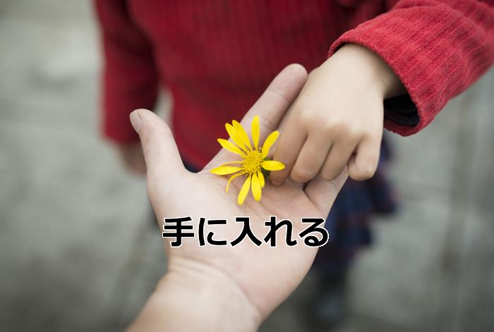 花を受け取る手