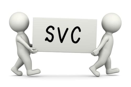 svcと書かれた箱を運ぶ二人