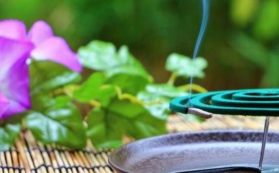 花と蚊取り線香