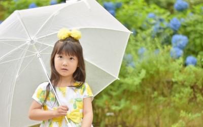 紫陽花の前に立つ傘をさした少女