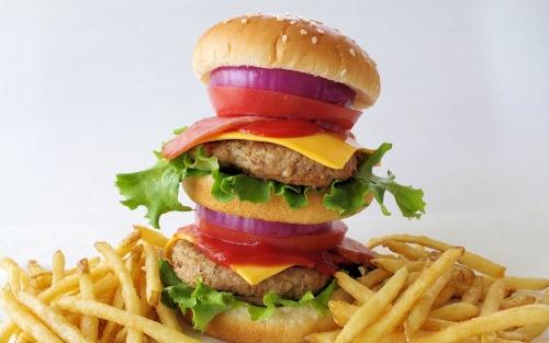 十分すぎる量のハンバーガーとポテト