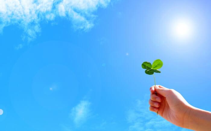 青空、太陽、手、葉っぱ